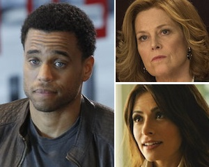 Report: Common Law Unlikely to Return, Political Animals and Two Other USA Shows on Bubble – TVLine